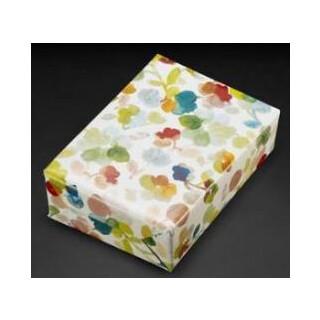 Geschenkpapier 453454 70x100cm