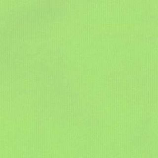 Geschenkpapier 450459 apfelgrün