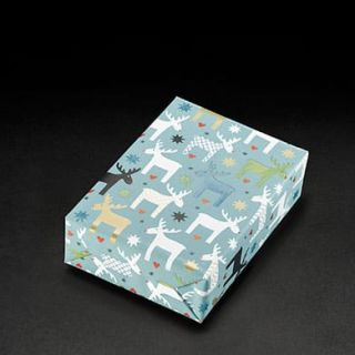 Geschenkpapier 452076 70x100cm