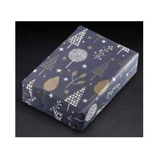 Geschenkpapier 450413 70x100cm