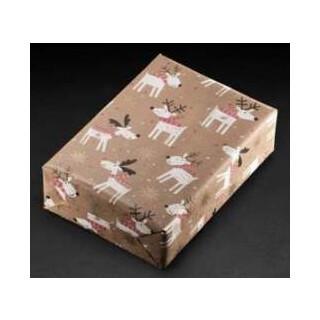 Geschenkpapier 450424 70x100cm