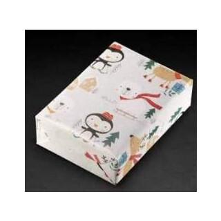 Geschenkpapier 450446 70x100cm